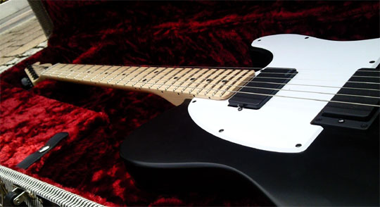fender-jim-root-telecaster-signature